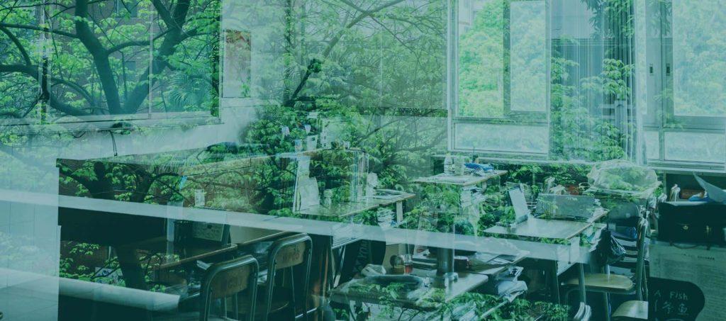 Calitate aer scoli